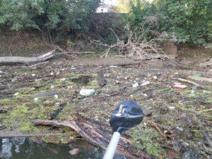 Maumee River Trash